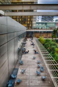 Terrasse de la BNF